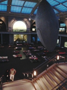 The sleepover site under the Blue Whale