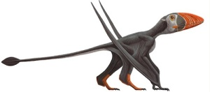 AMNH illustration of Mary Anning's Dimorphodon. Courtesy: AMNH.