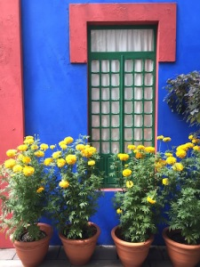 NYBG's Haupt Conservatory is transformed into Frida's Casa Azul