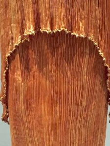 Close-up: Fortuny's hand-pleated, hand-sewn 1920s charmeuse dress; Venetian-beads embroidery and hand-knotted silk trim